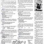 aktuel_1-42_0131